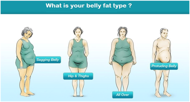 What is bbw body type